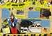 Guinness World Records Wilde Tiere Kinderbücher;Kindersachbücher - Bild 4 - Ravensburger